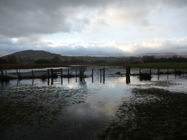 Flooded footpath at Llangorse Lake in January