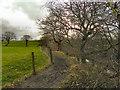 SD7913 : The Irwell Trail by David Dixon