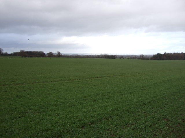 Farmland, Bishop Monkton Moor