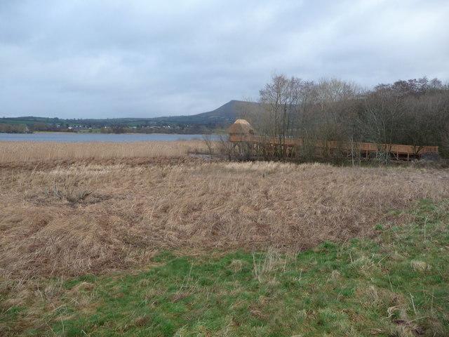 Part of Llangorse Lake
