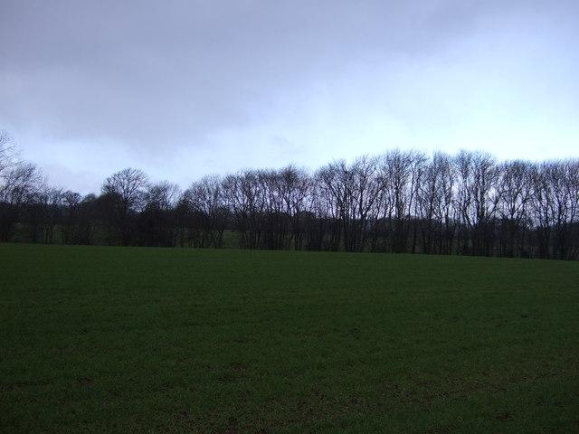 Farmland off Harrogate Road