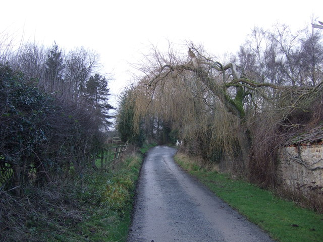 Track running west by Ingerthorpe Hall