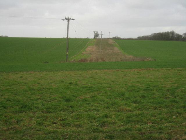 Wild space within fields