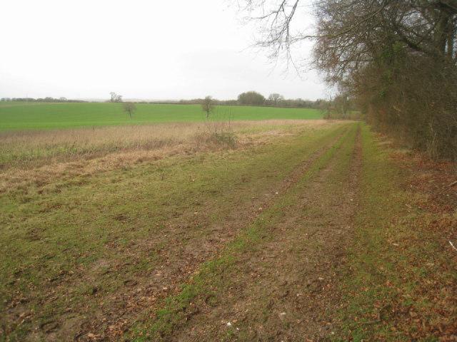 Track & woodland