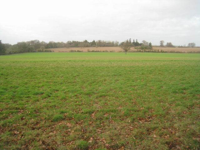 Field south of Oakley Park