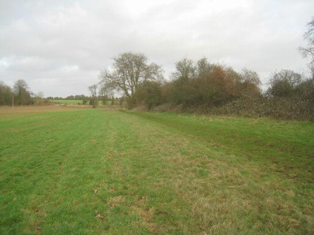 Field by railway