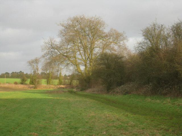 Field corner near railway