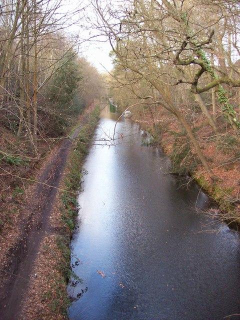 Basingstoke Canal from Deepcut Bridge