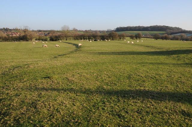 Field near Pulley Farm