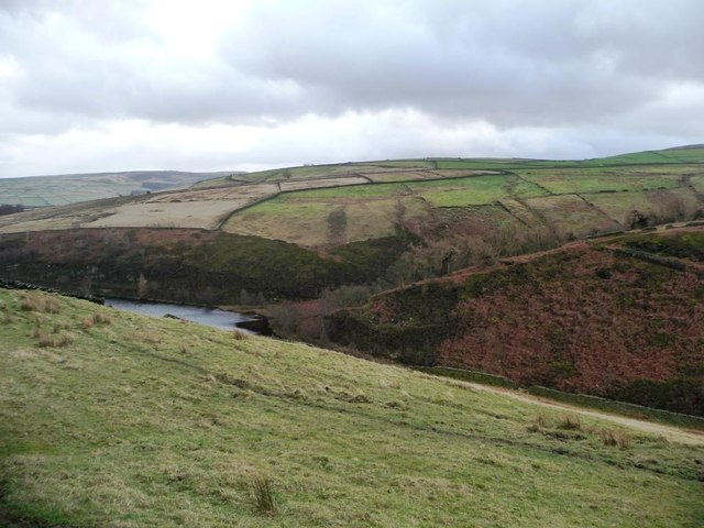 Steep field on the north side of Marsden Clough