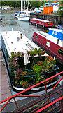 ST5772 : Bristol Floating Dock Marina by Peter Skynner