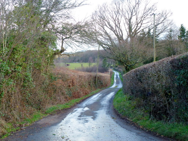 Lane to Maes-coed
