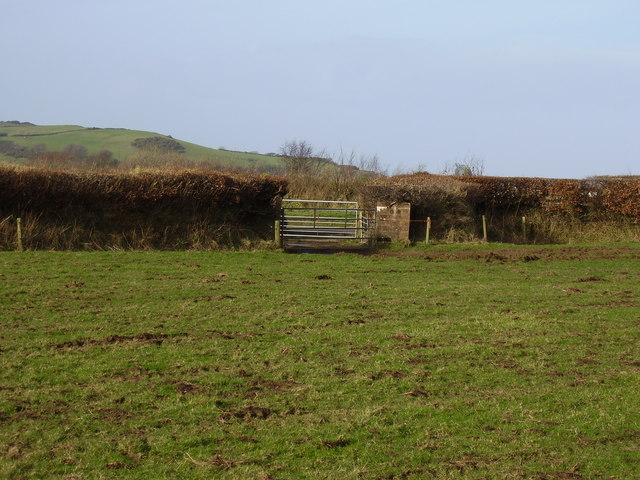 Gates in a field off the A3123