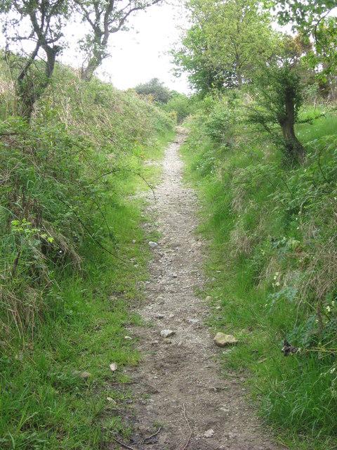 Bridleway near Staintondale