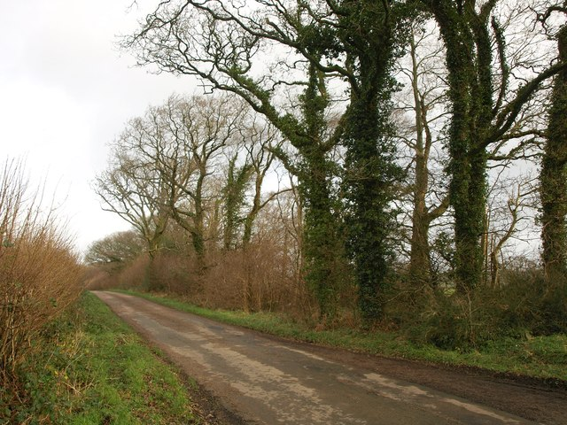 Tarka Trail to Jacobstowe