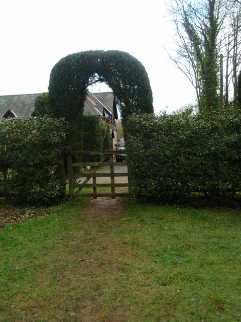 Topiary entrance /exit at Duncombe Wood