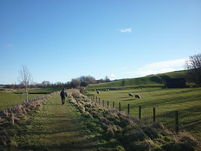 The Tees Railway Path near Lonton