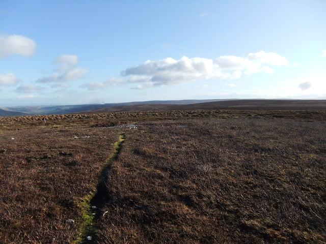 Near the 578m spot height on Melbecks Moor