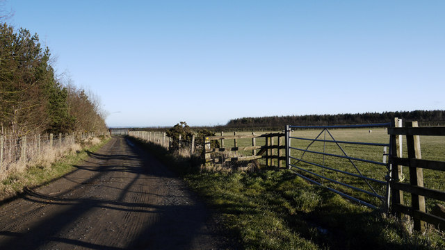 Access road at junction with the Deerness Valley Walk