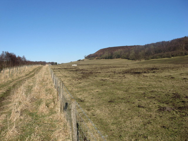 Bridleway near Boonhill