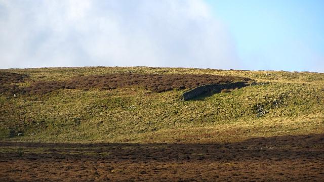 Isolated dyke section, Gately Rig