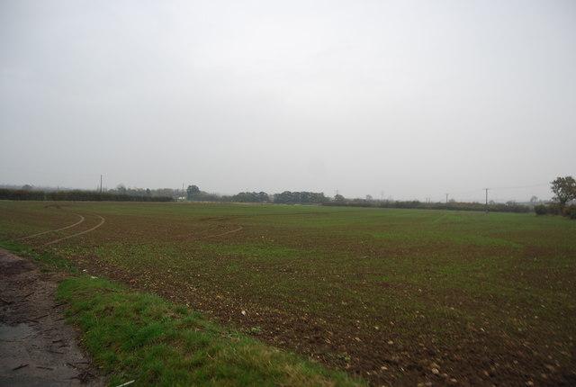 Farmland by Molehill Rd