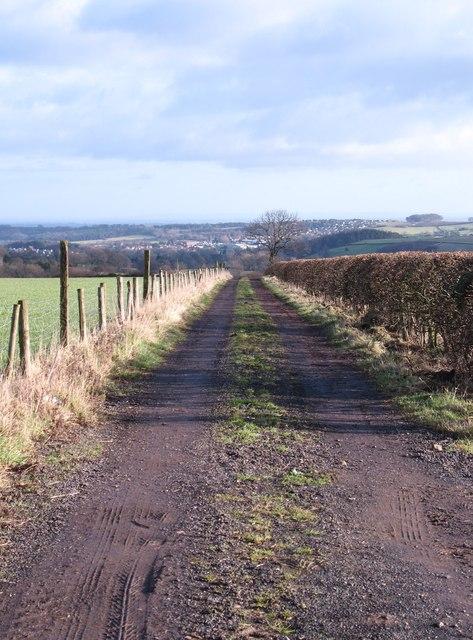 Farm track, North Rigton