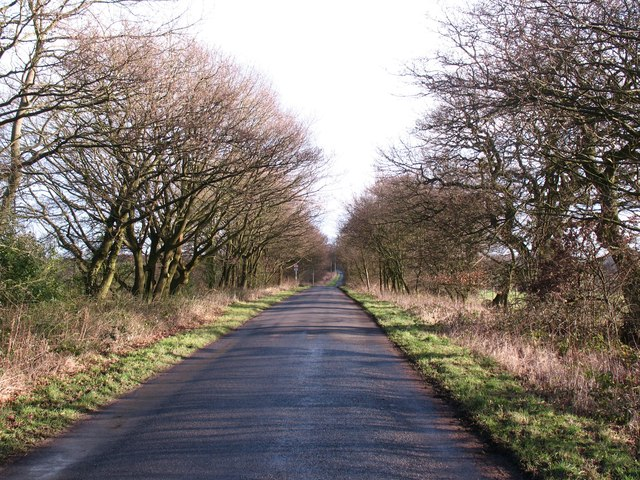 Brackenthwaite Lane