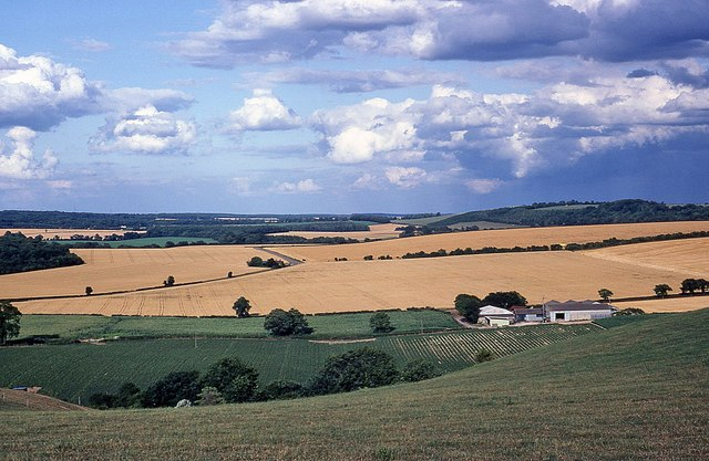 View of farmland from East Hoe Road
