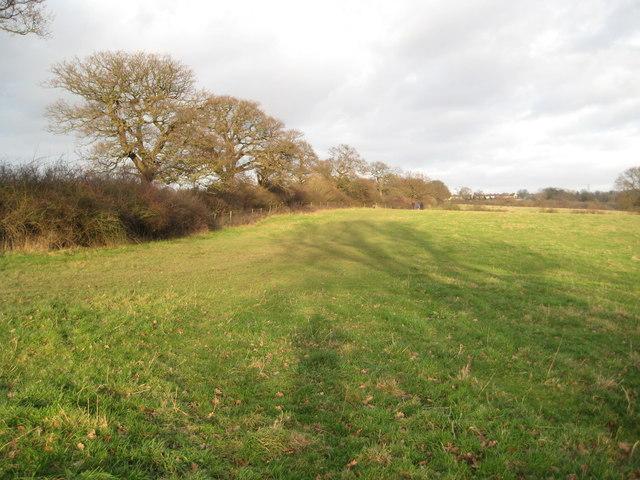 Bushey: Merry Hill