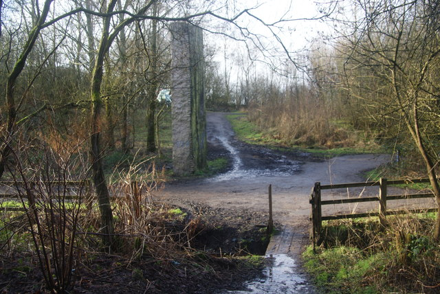 Paths in all directions in Outwood Country Park