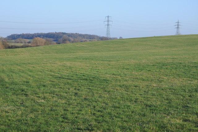 Farmland and pylon