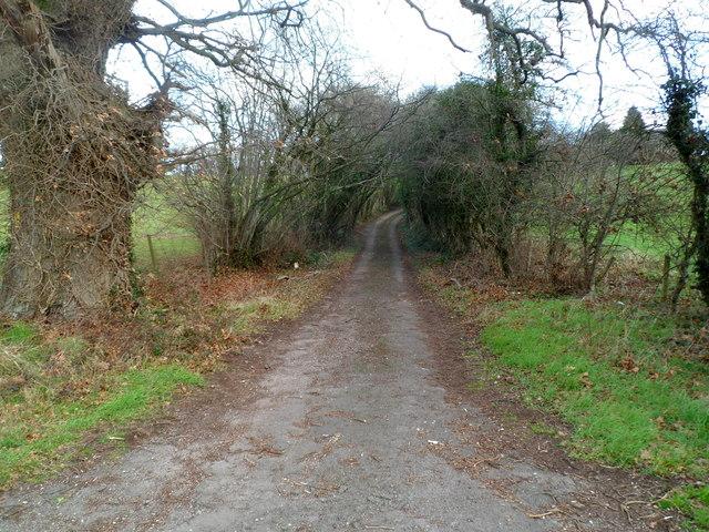 Entrance road to Little Ancrehill Farm near Rockhill