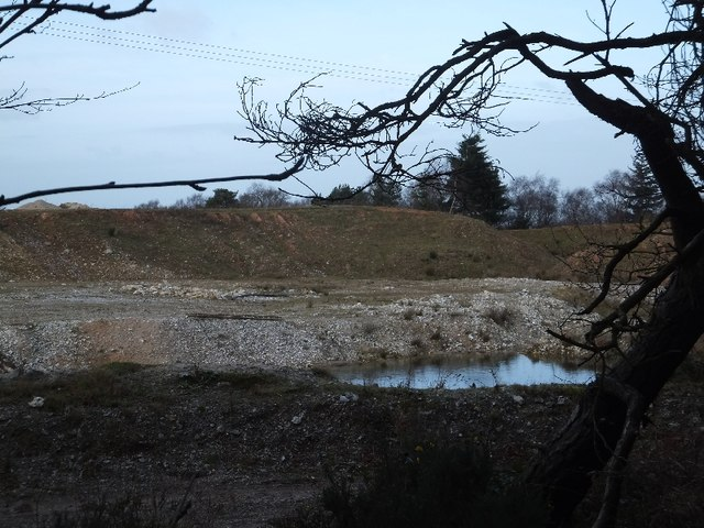 Quarry beside Veitch's Plantation seen from public footpath