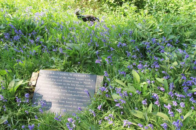 Plaque, Knebworth House, Hertfordshire