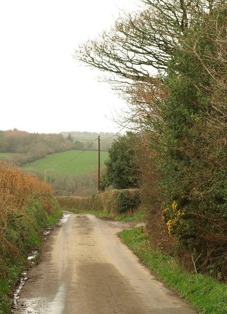 Lane near Fairleigh Farm