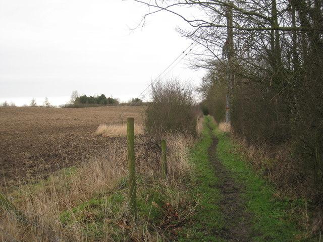 Bridleway near Stillingfleet mine