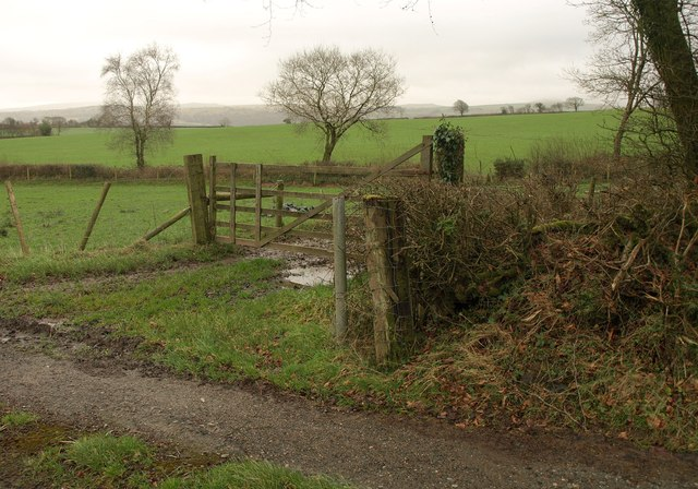 Beside the A386