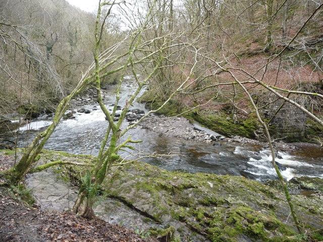 Bend on the Afon Nedd Fechan