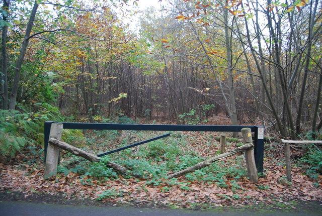 Footpath into East Blean Wood, Hicks Forstal Rd