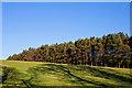NS9495 : Farmland near Aberdona Mains by William Starkey
