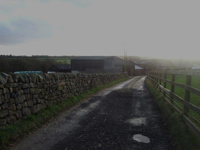 Track to Dike Bottom Farm