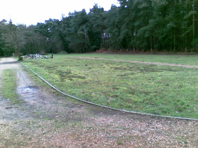 Former allotment gardens, West Moors