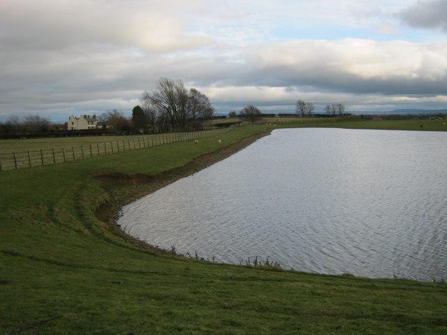 Northern shore of lake at Stapleton Manor.