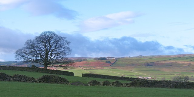 Light and shade in Nidderdale