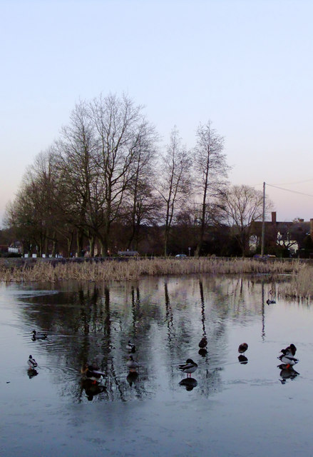The village pond, Tylers Green (2)