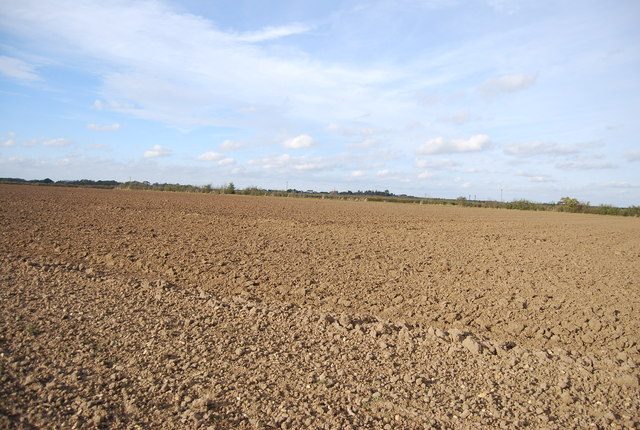 Fallow field near new Barn Farm