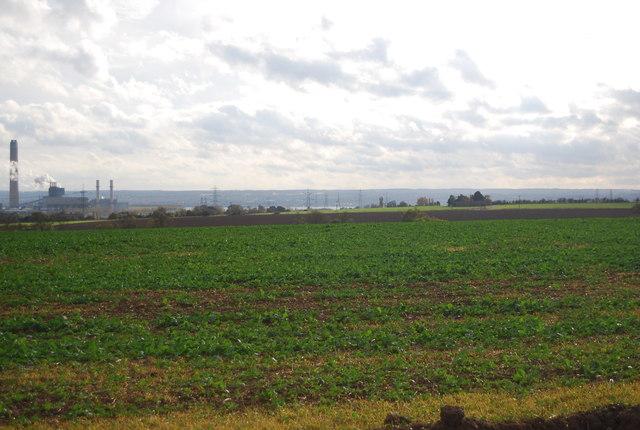 Crops, New Barn Farm