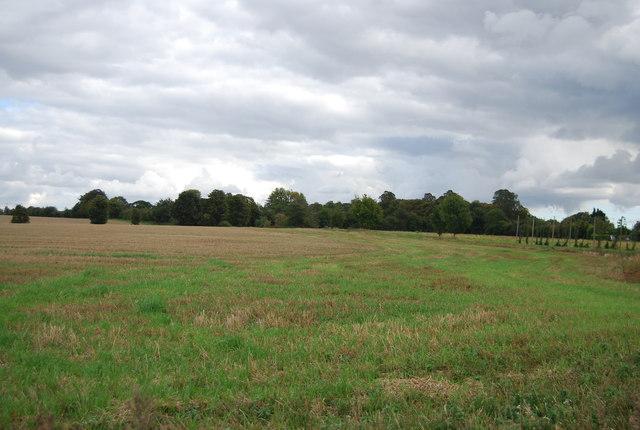 Farmland by The Slade