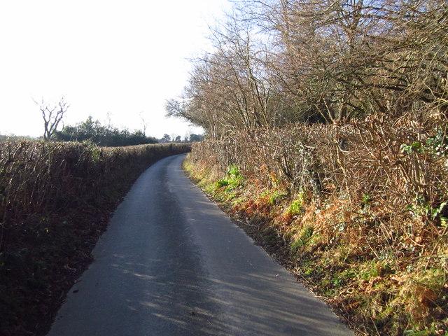 Corseley Road